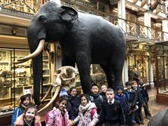 1st Class visit the Natural History Museum