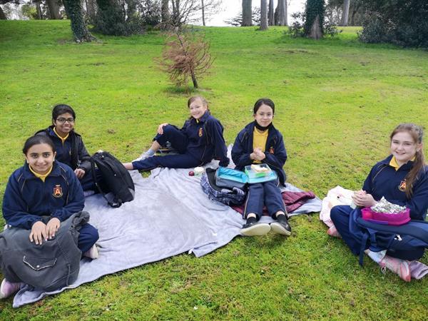 Park and Picnic, Ballawley Park